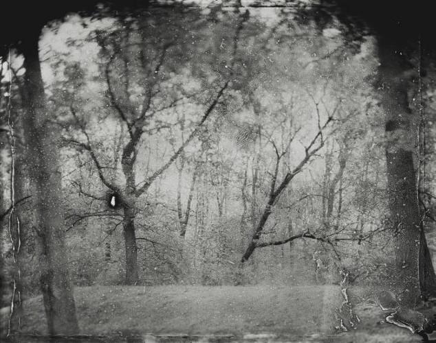 Panopticon 5 by Jessica M Kaufman