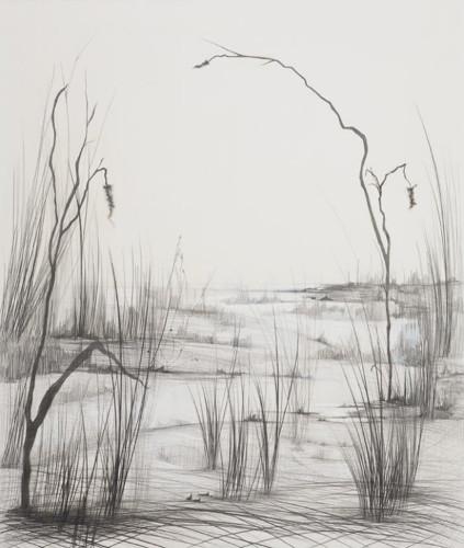 Path by Maria O'Malley