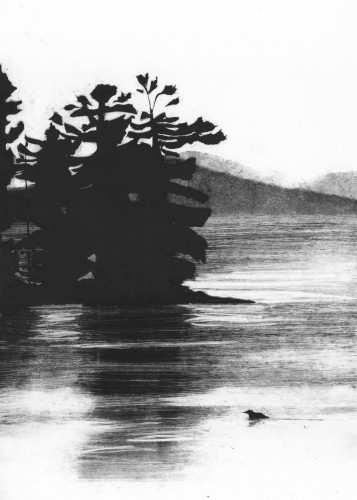 The Loon by Rachel Burgess