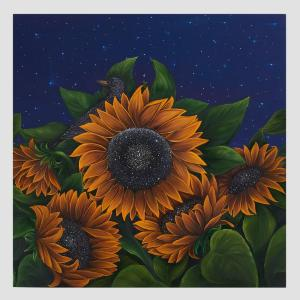 Sun and Stars by Allison Green