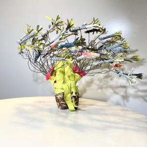 Accolades by Karin Bruckner