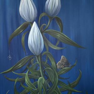 Midnight Lilies by Allison Green