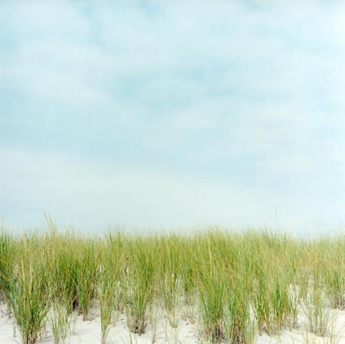 Dunes by Maria Passarotti