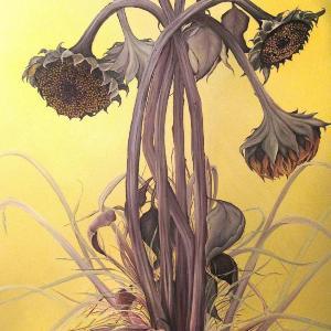 Autumn Sunflowers by Allison Green