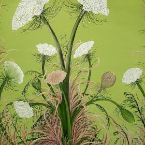 Queen Anne's Lace by Allison Green