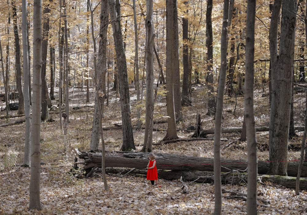 "MARIA PASSAROTTI, ""MARKING HER TRAIL"", 2013, PHOTOGRAPHIC PAPER, 40 X 28 INCHES"