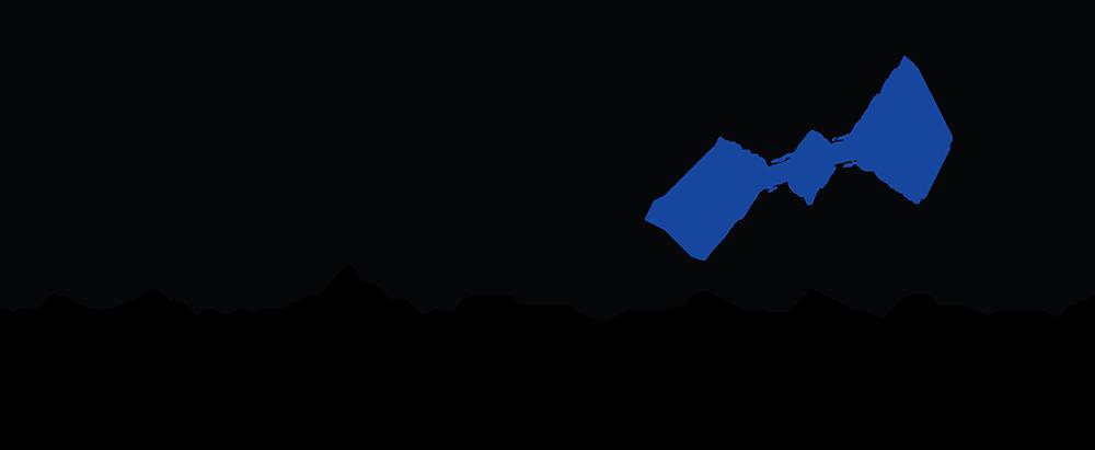 REVEAL_logo_sm-header.jpeg